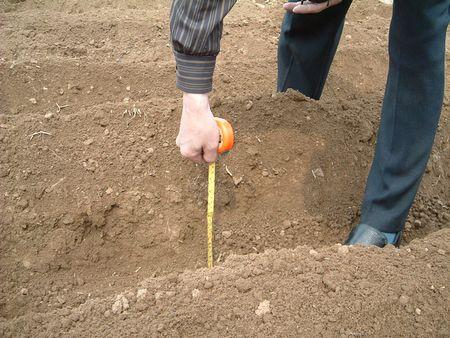 苗木栽植土壤厚度