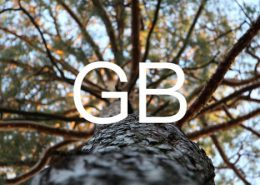 GB6000-图片
