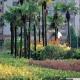 西安绿化工程