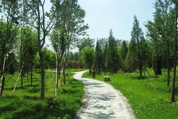 西安绿化景观