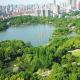 市政园林绿化的必要性