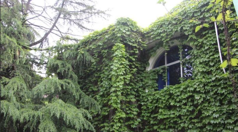 环境优美的住宅