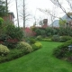 你对自家小区绿化满意吗?