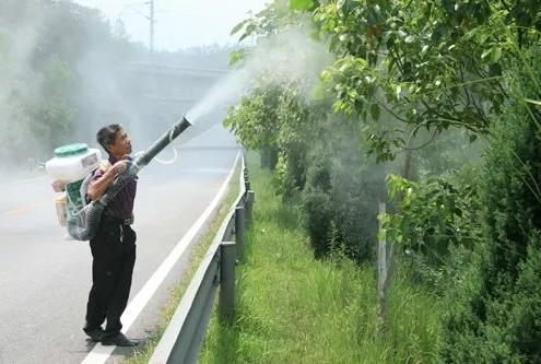 防治苗木的病虫害
