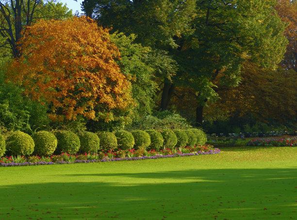 优质的土壤用土对苗木的生长非常重要